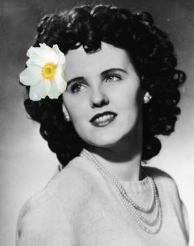 Elizabeth Short fleur cheveux